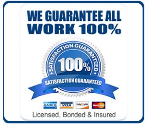 100-satisfaction-guaranteed-silver-blue-circle-250